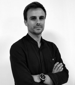 David Gestionnaire de projet